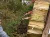axtwerfen-messerwerfen-bogenfreund-065